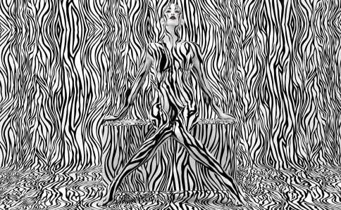 Stefan_sagmeister02