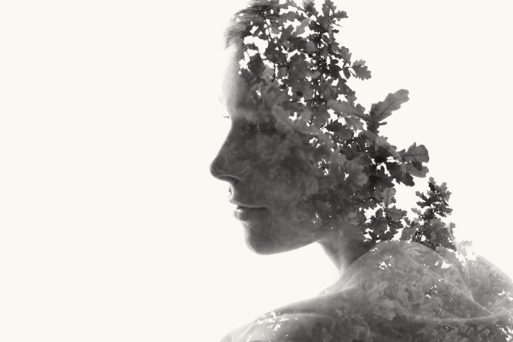 Christofferrelander02